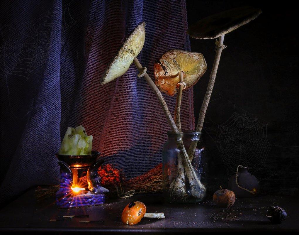 В логове у ведьмочки... - Svetlana Sneg
