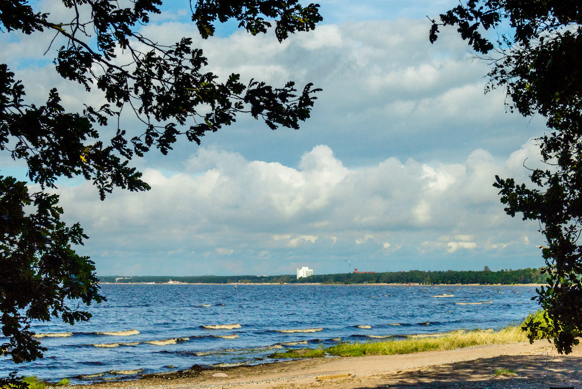 На Финском заливе 4 - Виталий