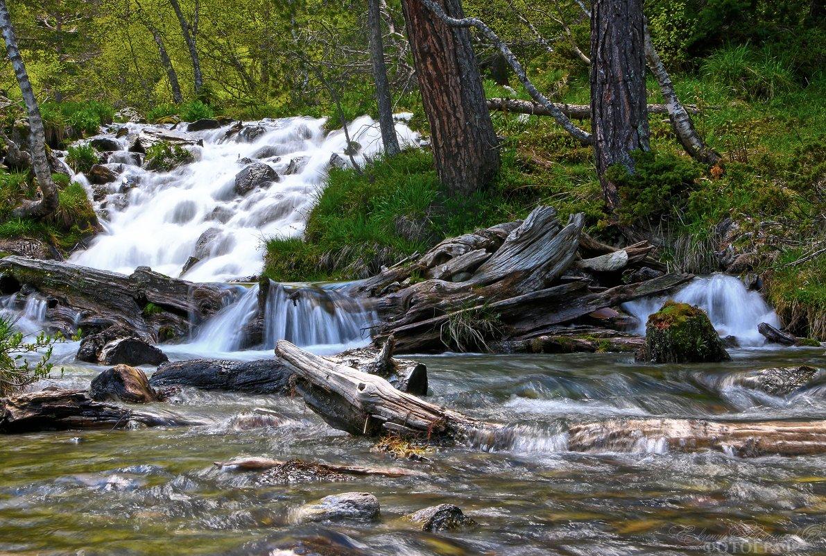 один из ручьев у подножья Софийских водопадов. (Архыз) - Евгений Ромащенко