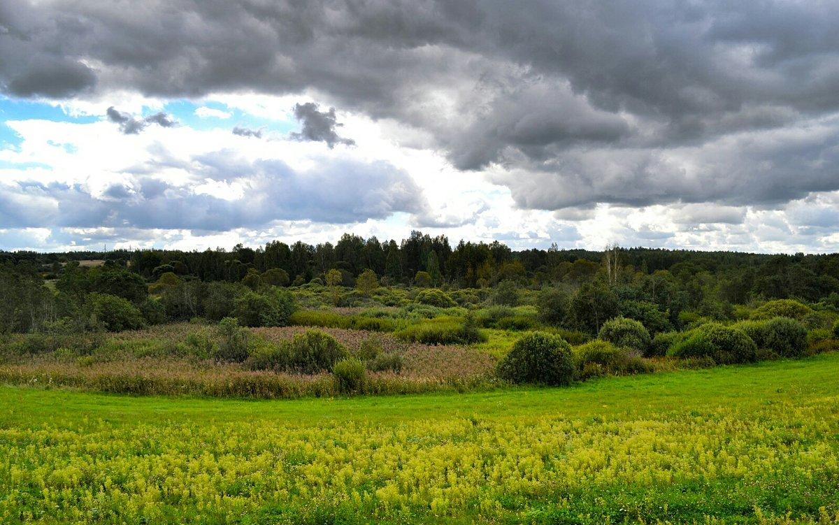 Природа в начале осени - Милешкин Владимир Алексеевич
