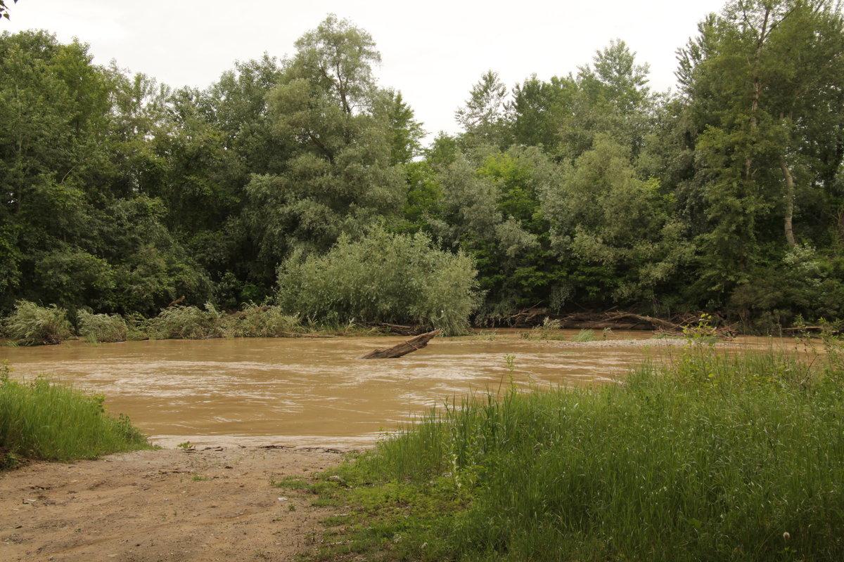 Река Фарс после дождей. - Олег Афанасьевич Сергеев