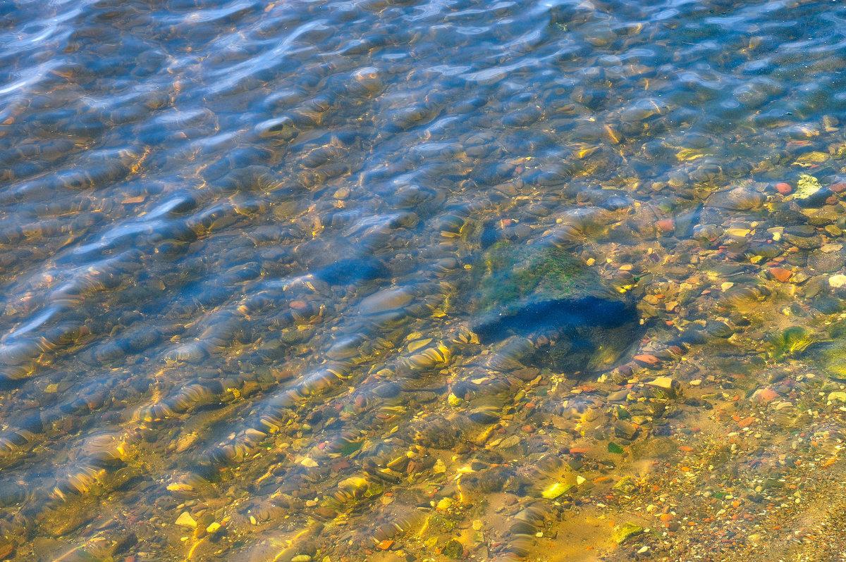 Прозрачная вода Волги. Чкаловск. - Сергей Тагиров