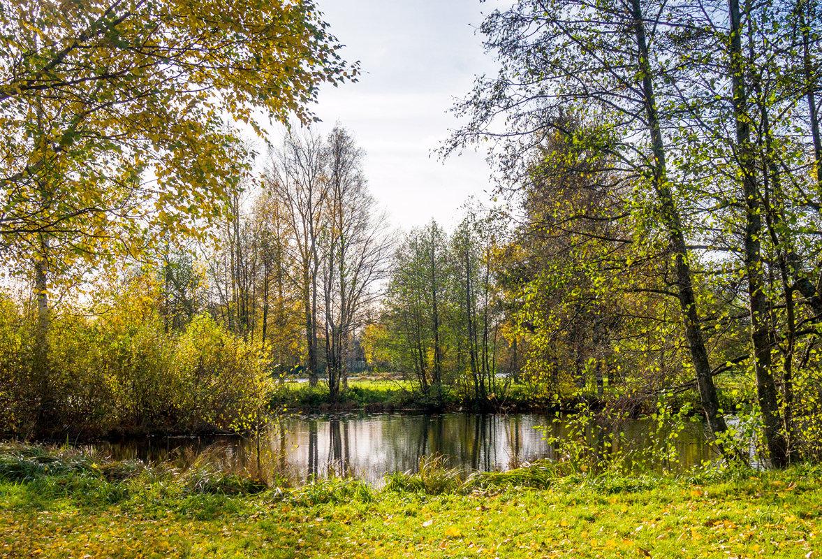 На берегу озера Разлив 4 - Виталий