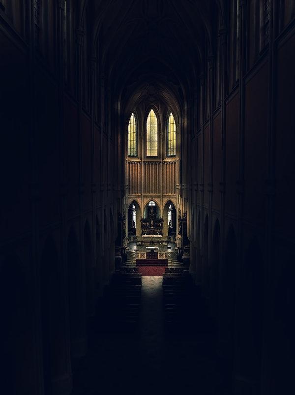 В одном старинном католическом соборе... - Елизавета Вавилова