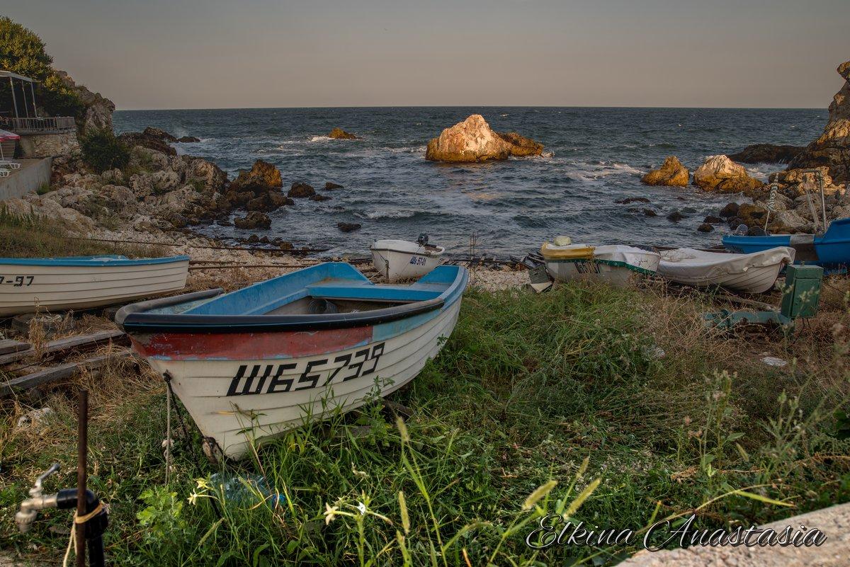 Чёрное Море и солнце - Анастасия Елкина