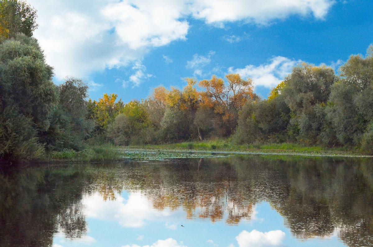Уж небо осенью дышало.... - Михаил Болдырев