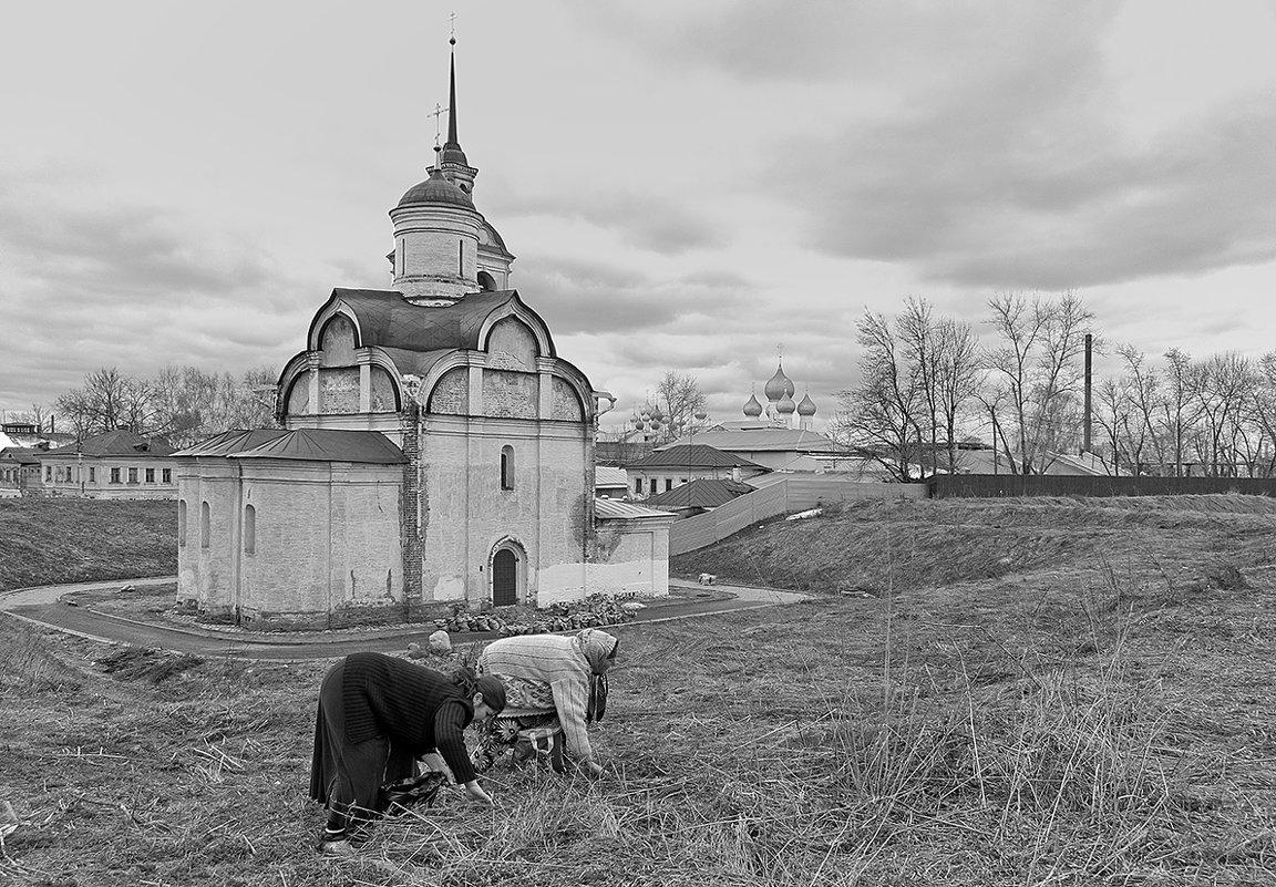 На подножном корме - Николай Белавин
