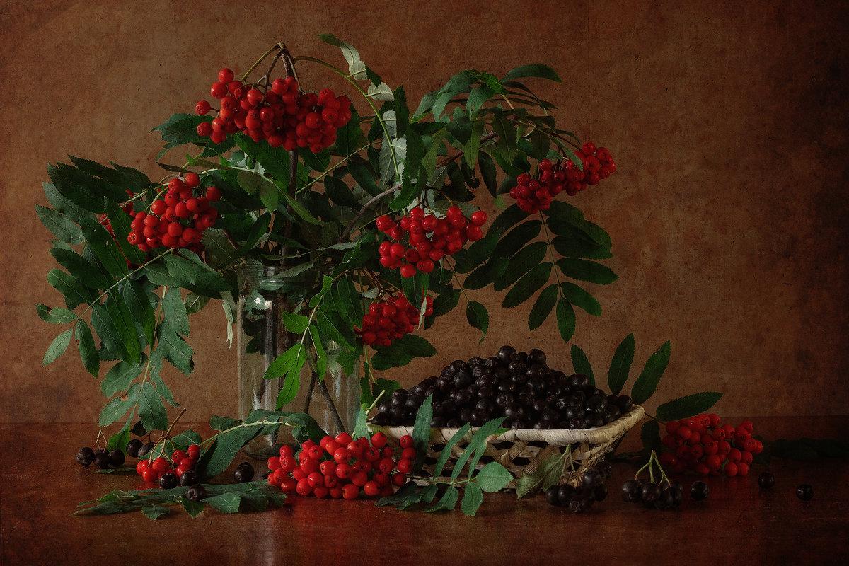 Красная и черная - Natalia Furina