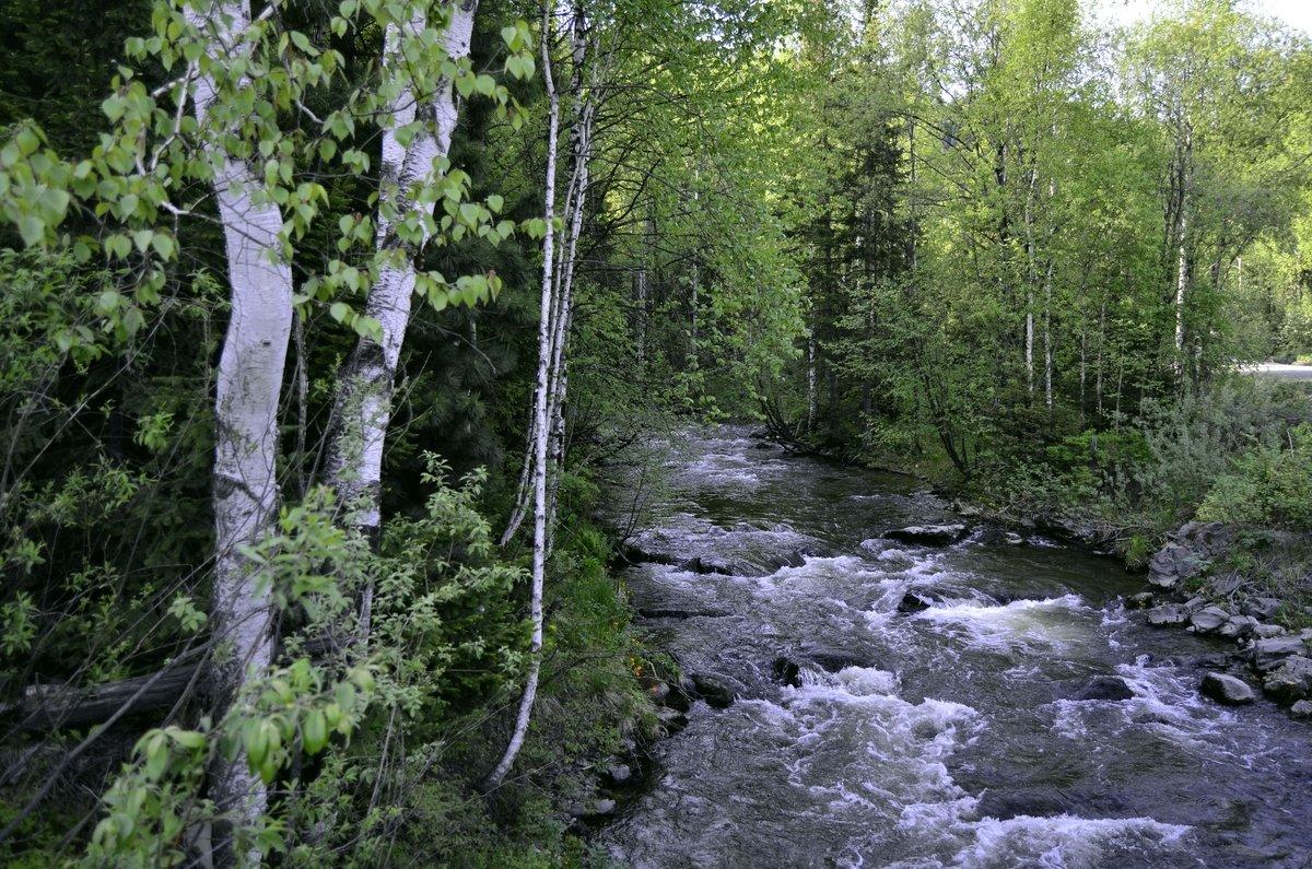 Малые реки Саян. - Сергей Щербаков