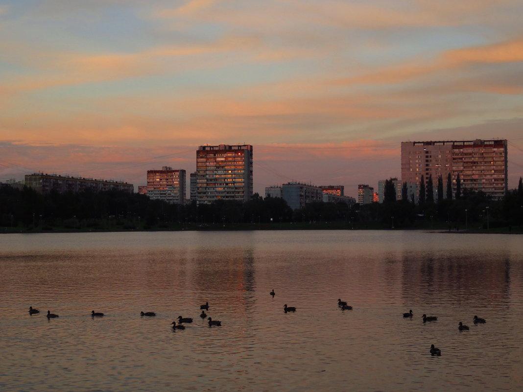 Сентябрьский вечер на пруду - Андрей Лукьянов