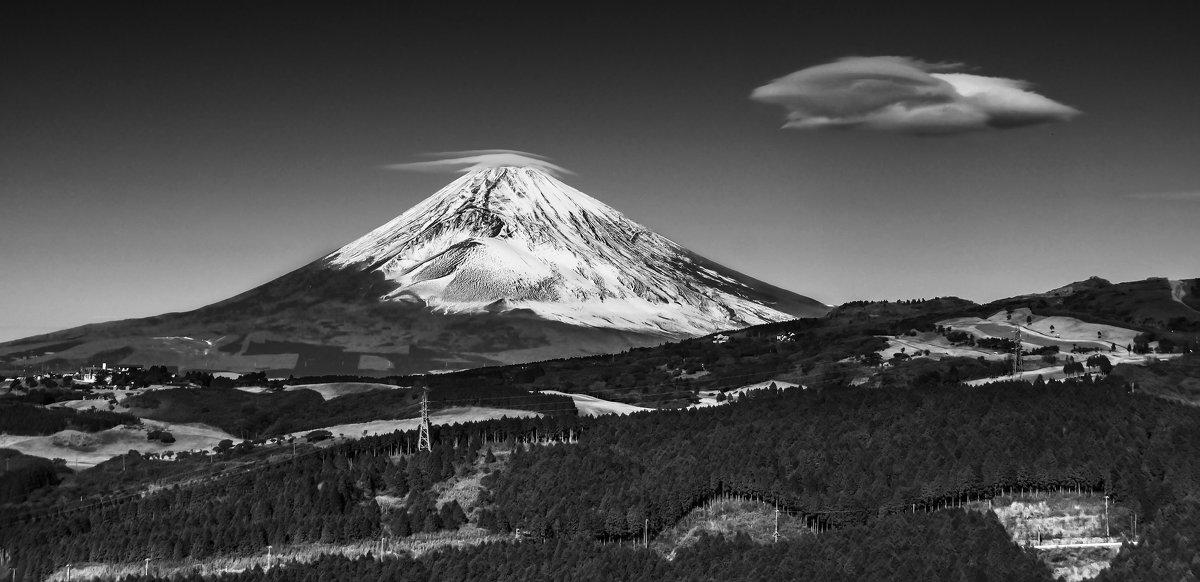 Fuji - Slava Hamamoto
