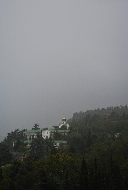 Занавес из тумана - Наталья Покацкая