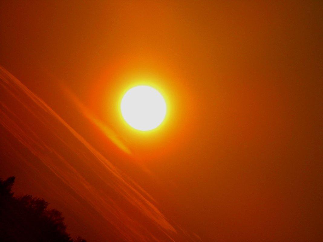 Осеннее солнце - Ирина Останина