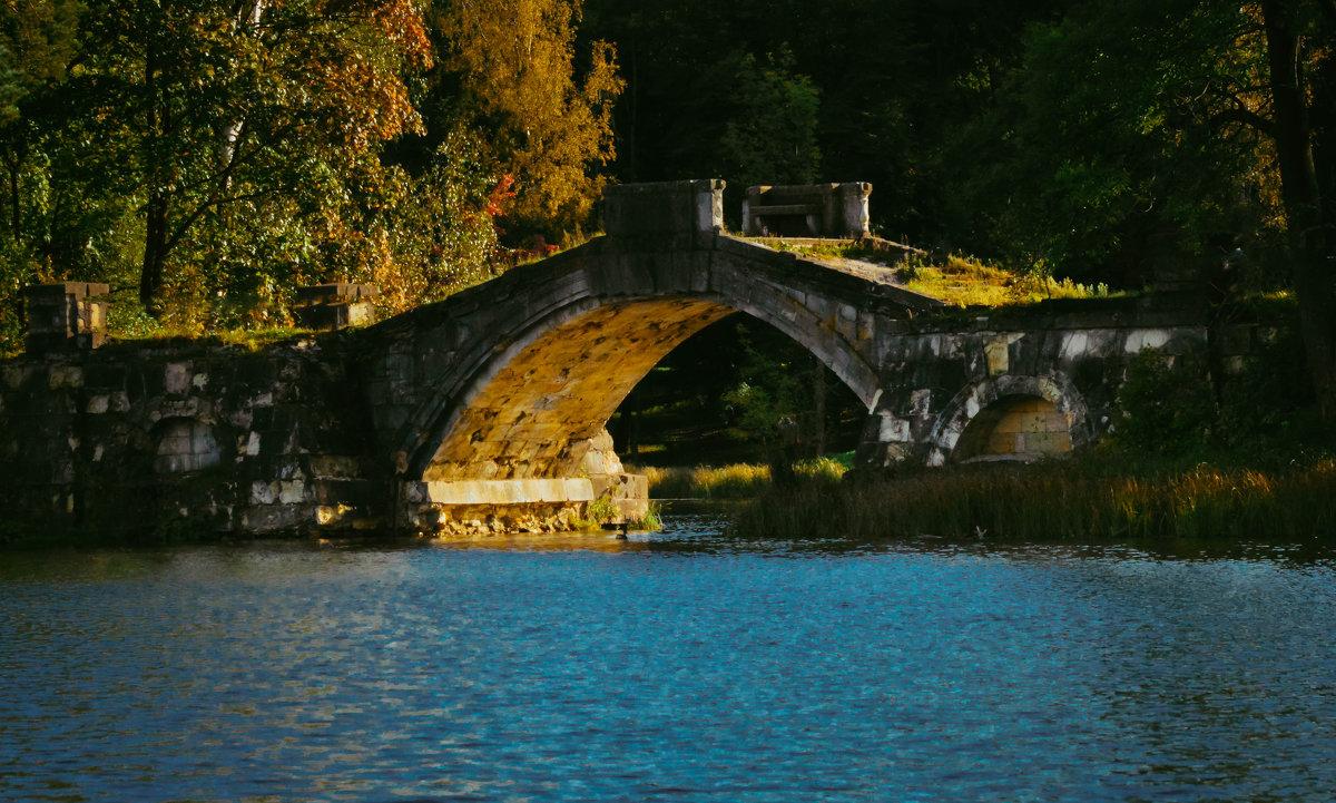 Горбатый мост - Роман
