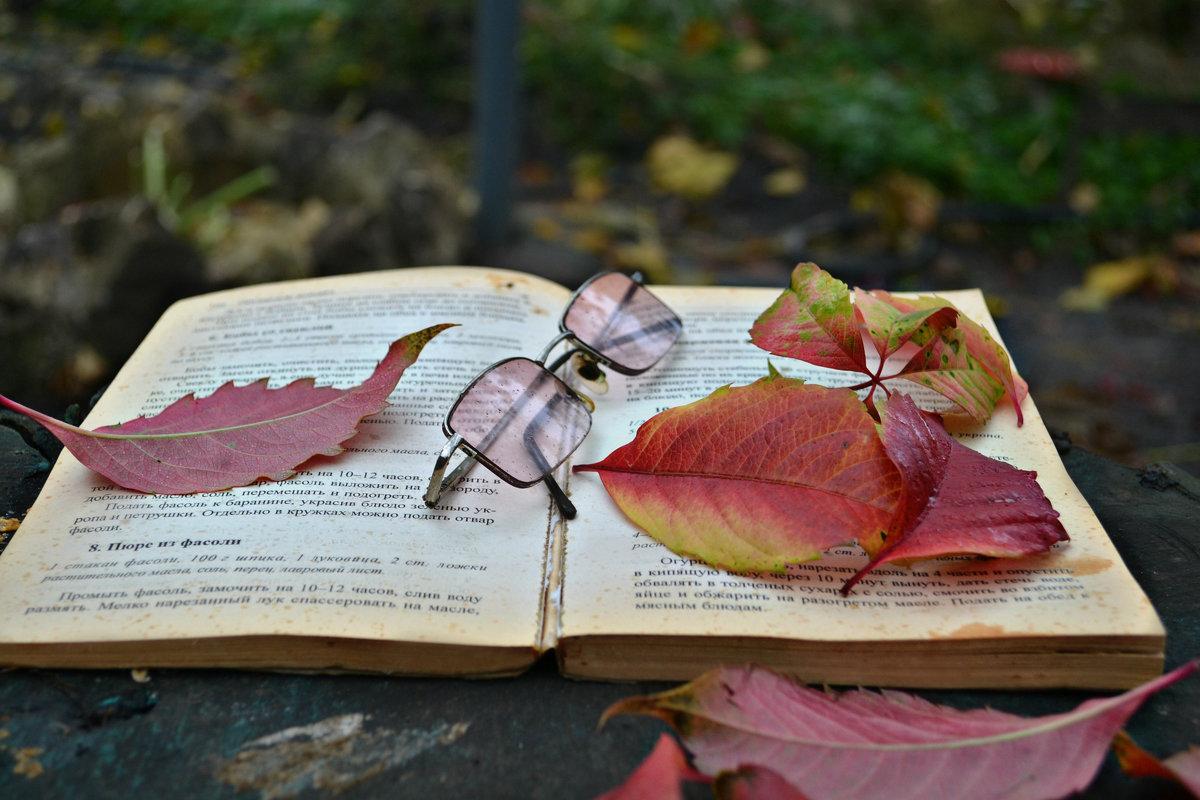 Забытая книга - Клара