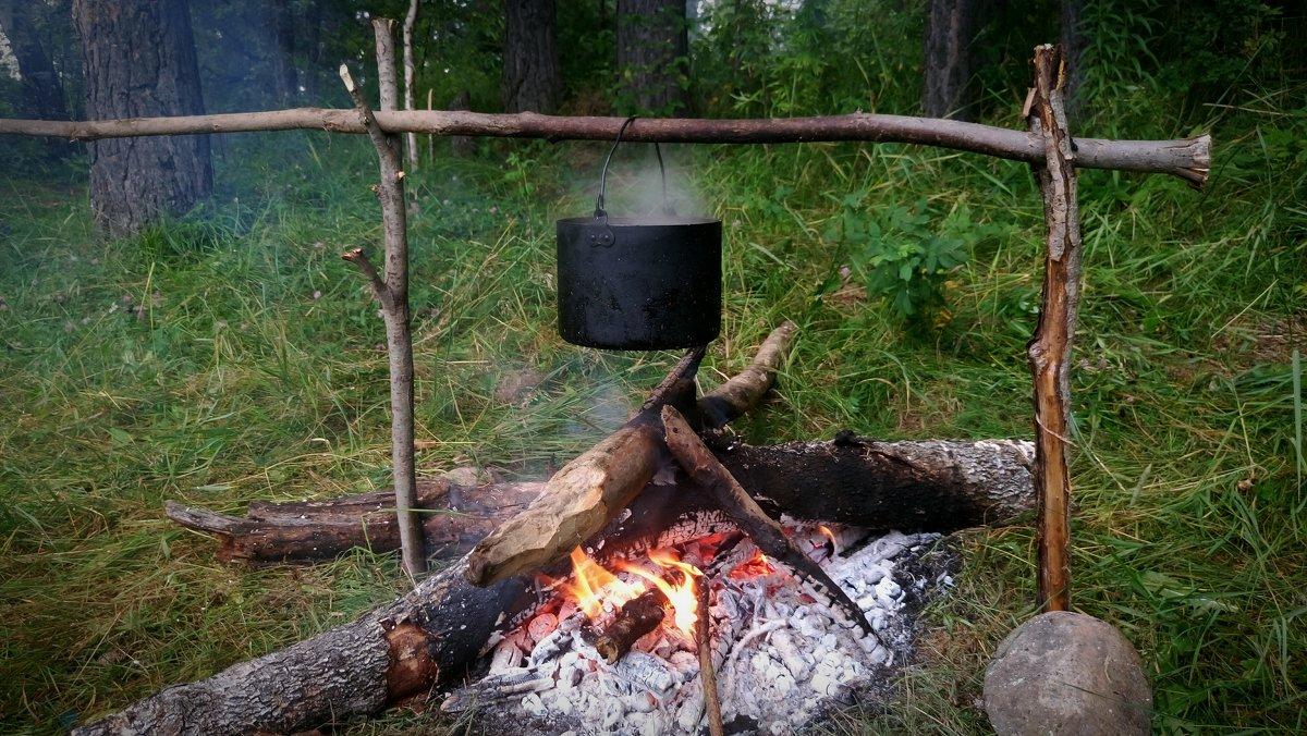 Таежный чай - Елена Бушуева