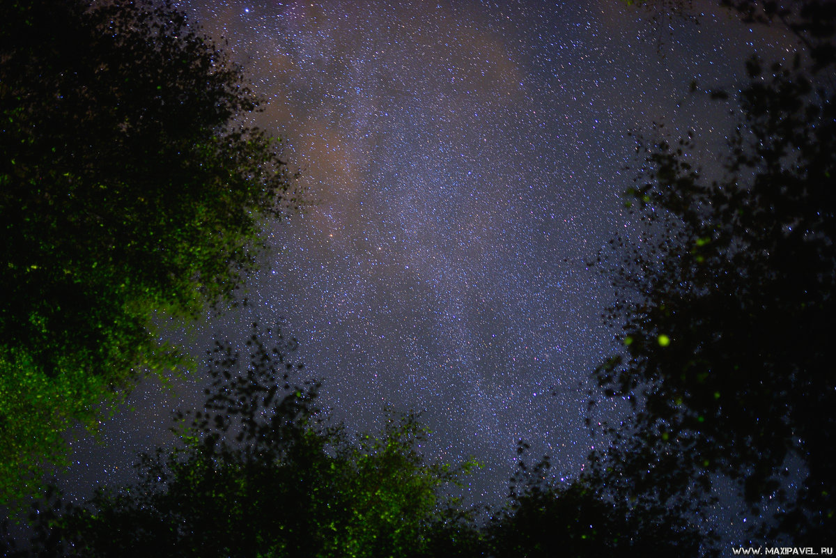 Ночное небо - Павел Максимов