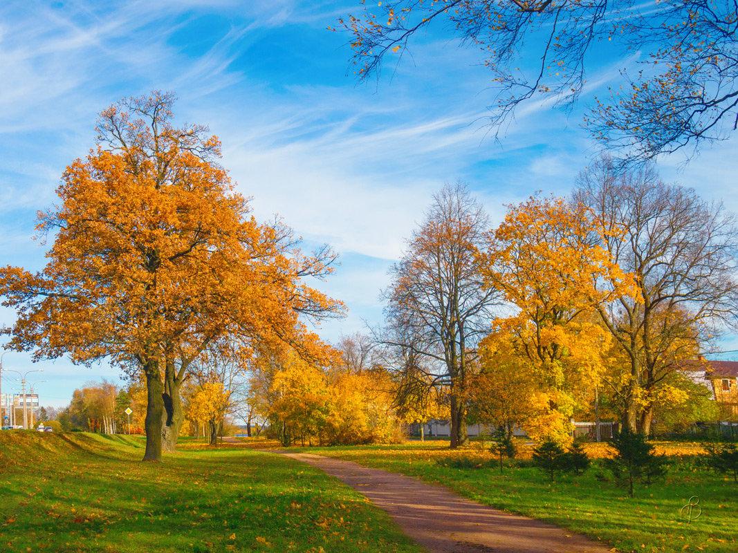Осень в пригороде - Виталий