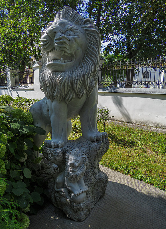 Лев Губернаторского сада - Сергей Цветков