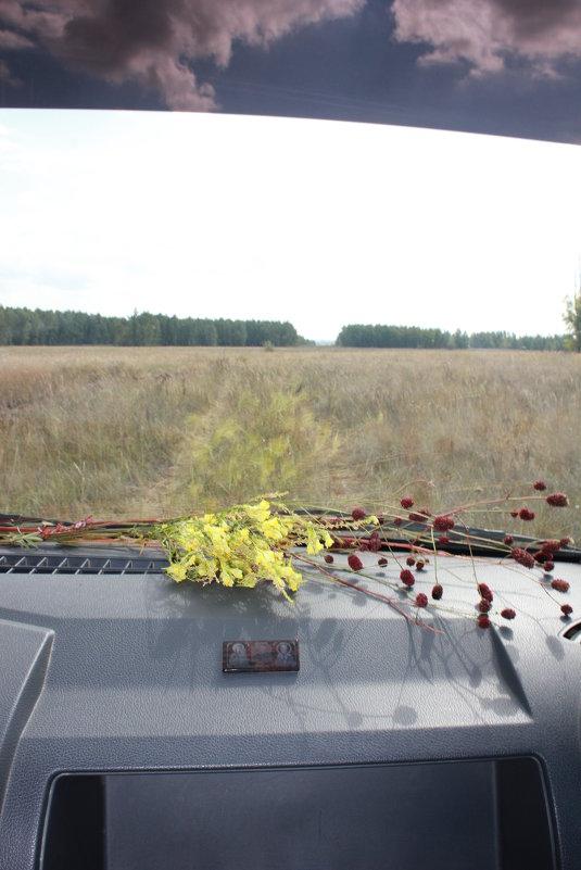 в пути - Оксана К