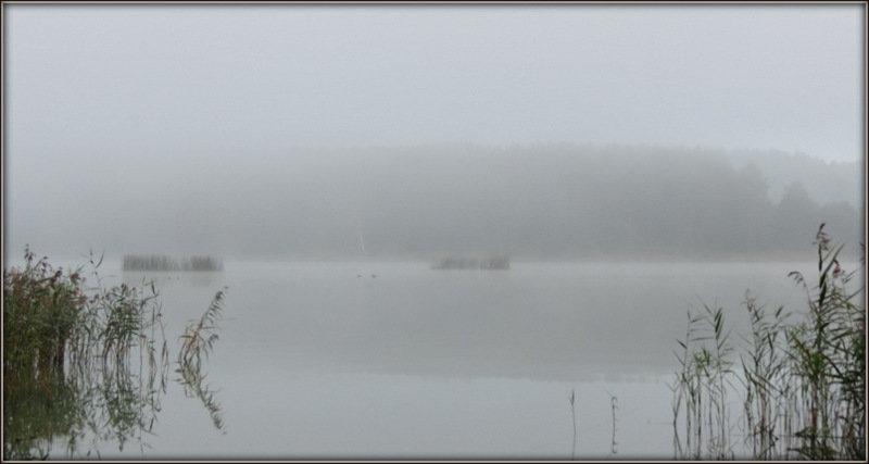 Туманное утро - Михаил Цегалко