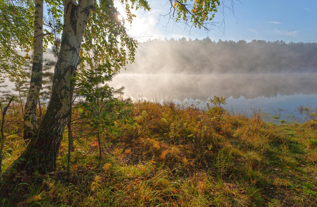 Туман над заливом - Анатолий Иргл