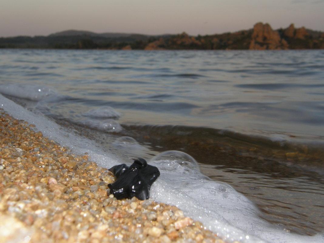 Вечер на озере - Андрей