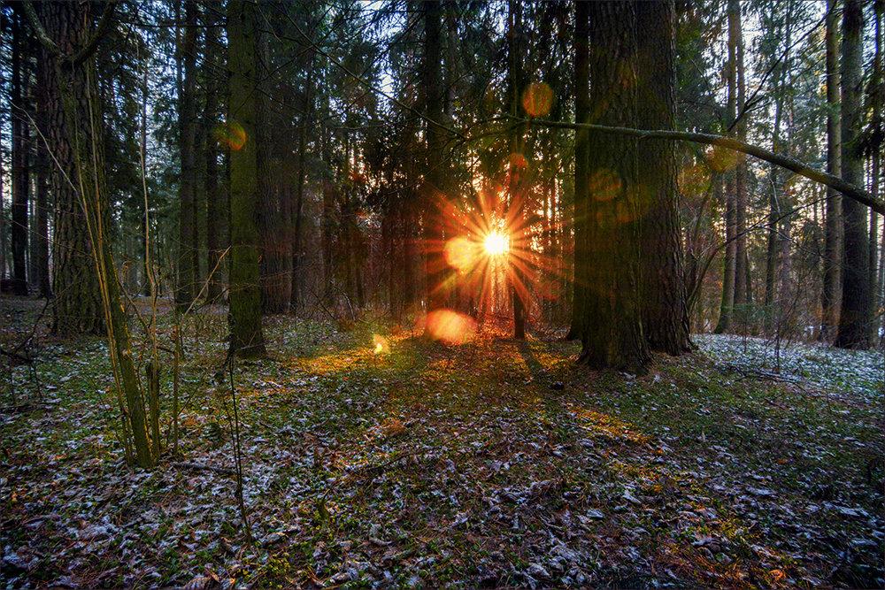 Солнечный прожектор - Vladimir
