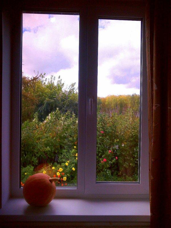 Зеленый мир в окне - Елена *
