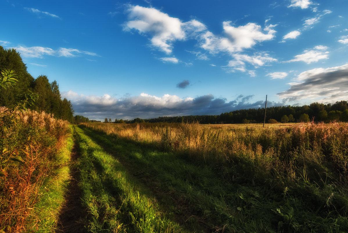 Прямая дорога, кривые столбы - Дмитрий Б.