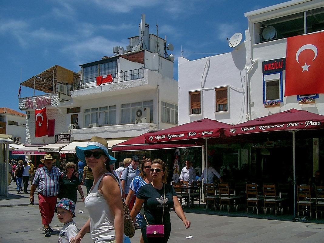 Турция - Людвикас Масюлис