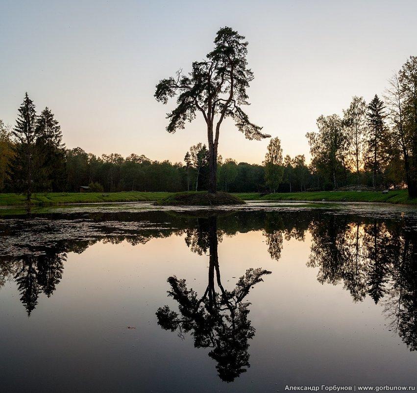 Пленник старого озера - Александр Горбунов