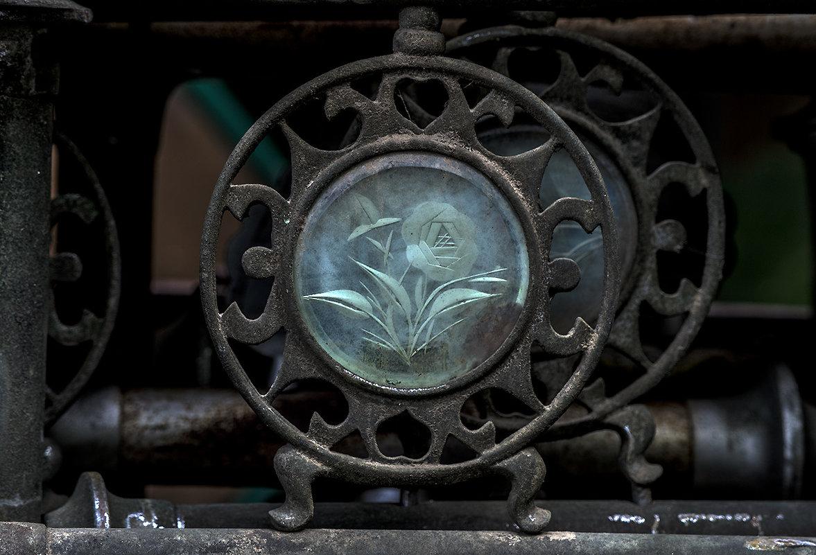 античная роза - Александр