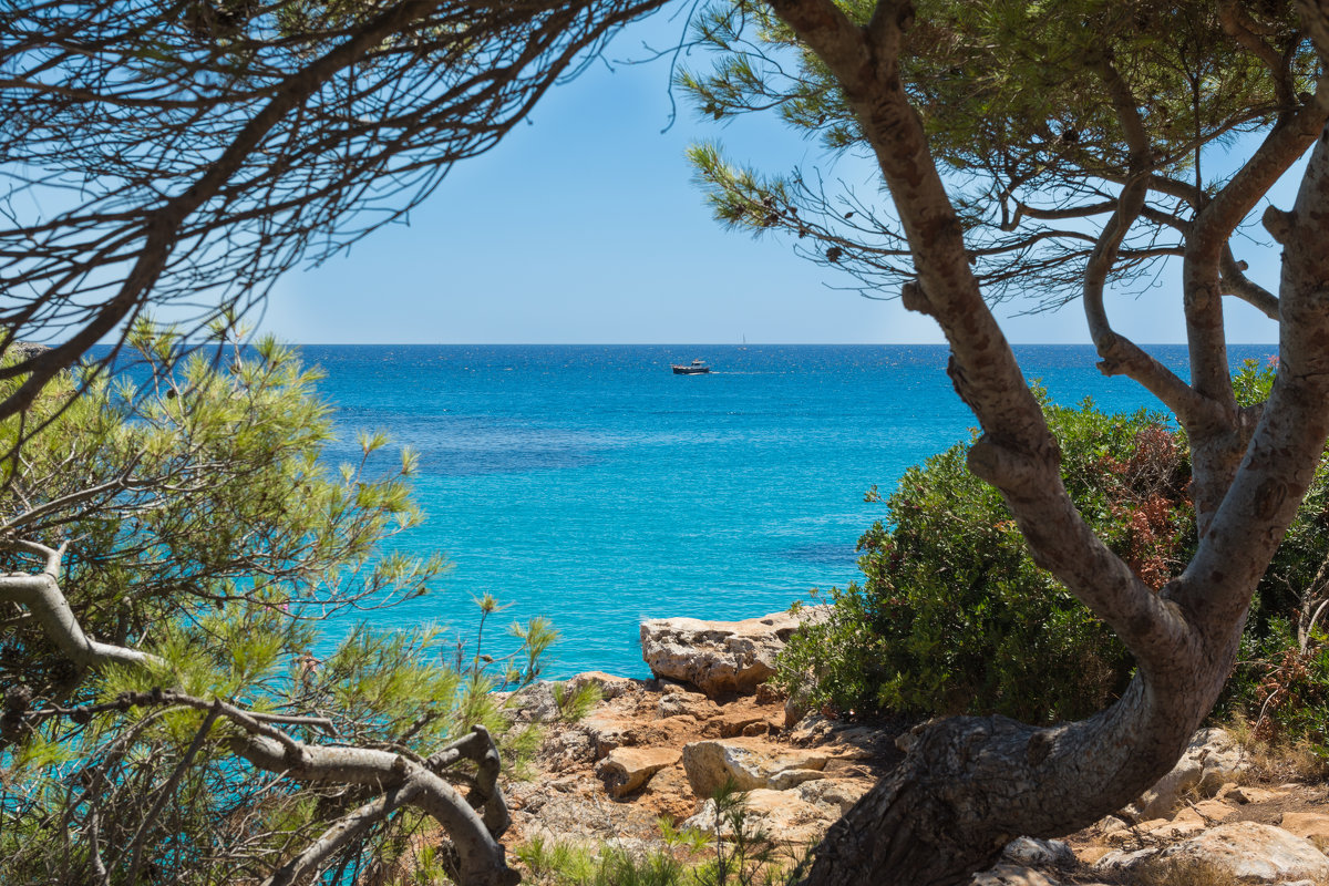 Средиземное море - Элла Ш.