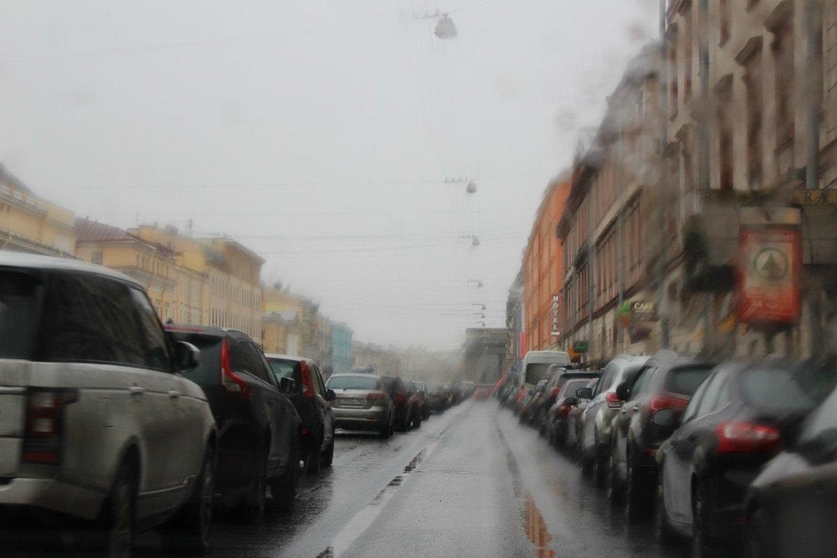 Дождь - Даниил Новицкий