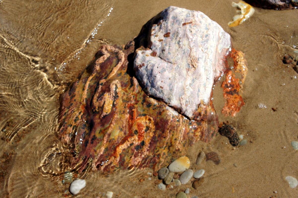 Просто красивый камень в воде... - Елена Павлова (Смолова)
