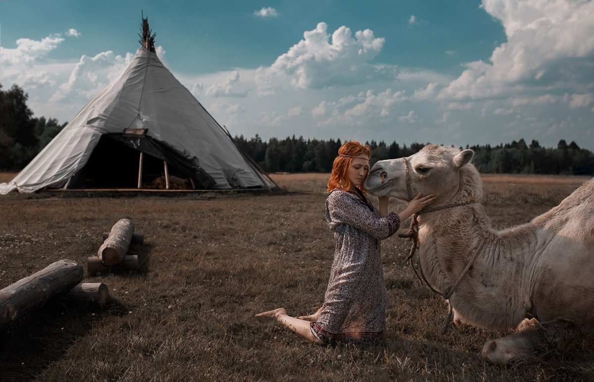 Анималистика - Денис Старков