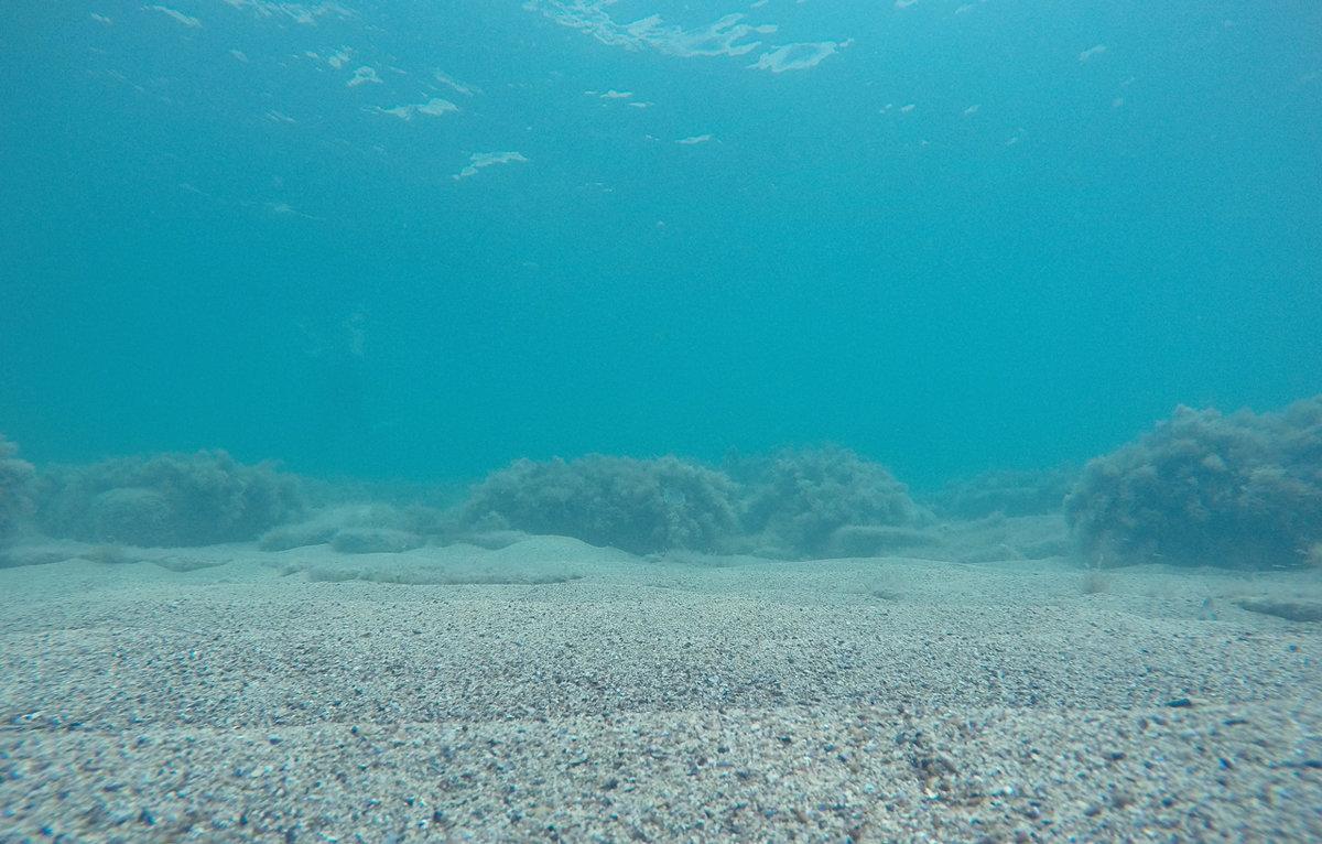 На дне морском - Диана С