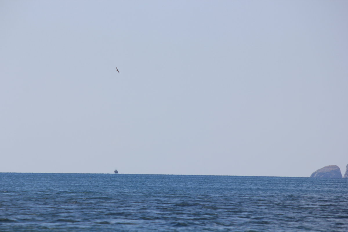 Отдых на море-167. - Руслан Грицунь