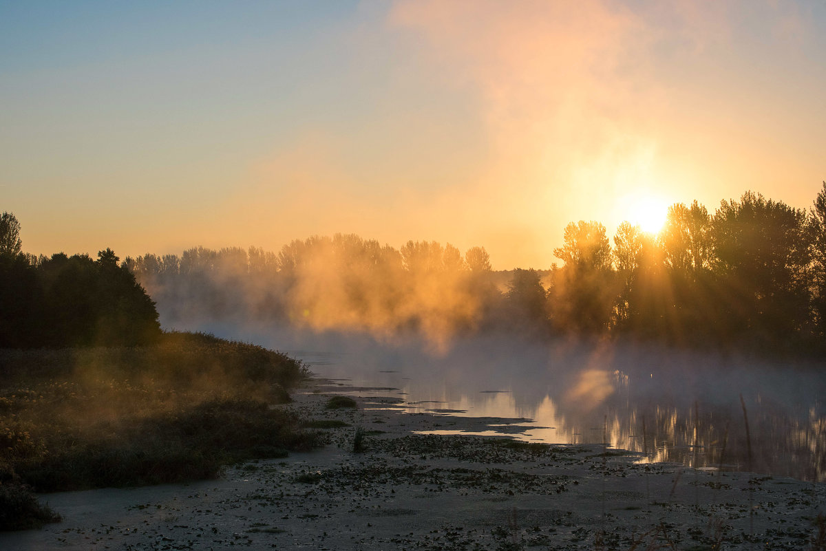 Осеннее утро на реке Оскол - Инна Голубицкая