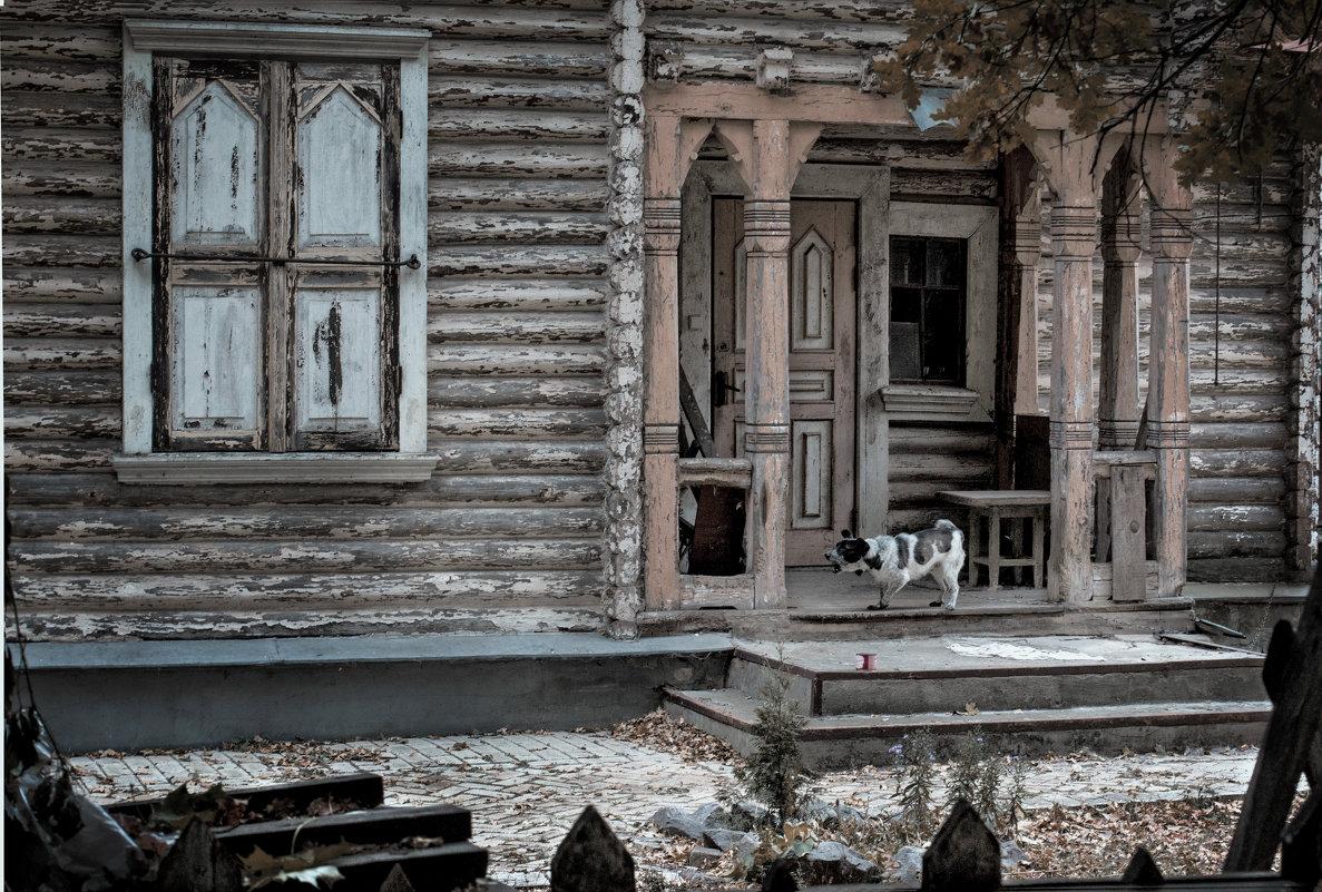 Из-за забора - Андрей Медведев