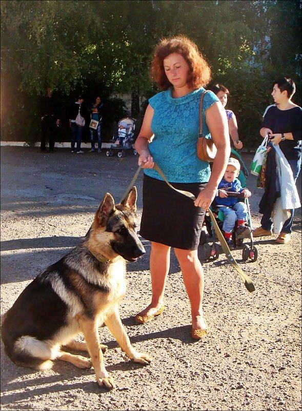 С хозяйкой на поводке - Нина Корешкова