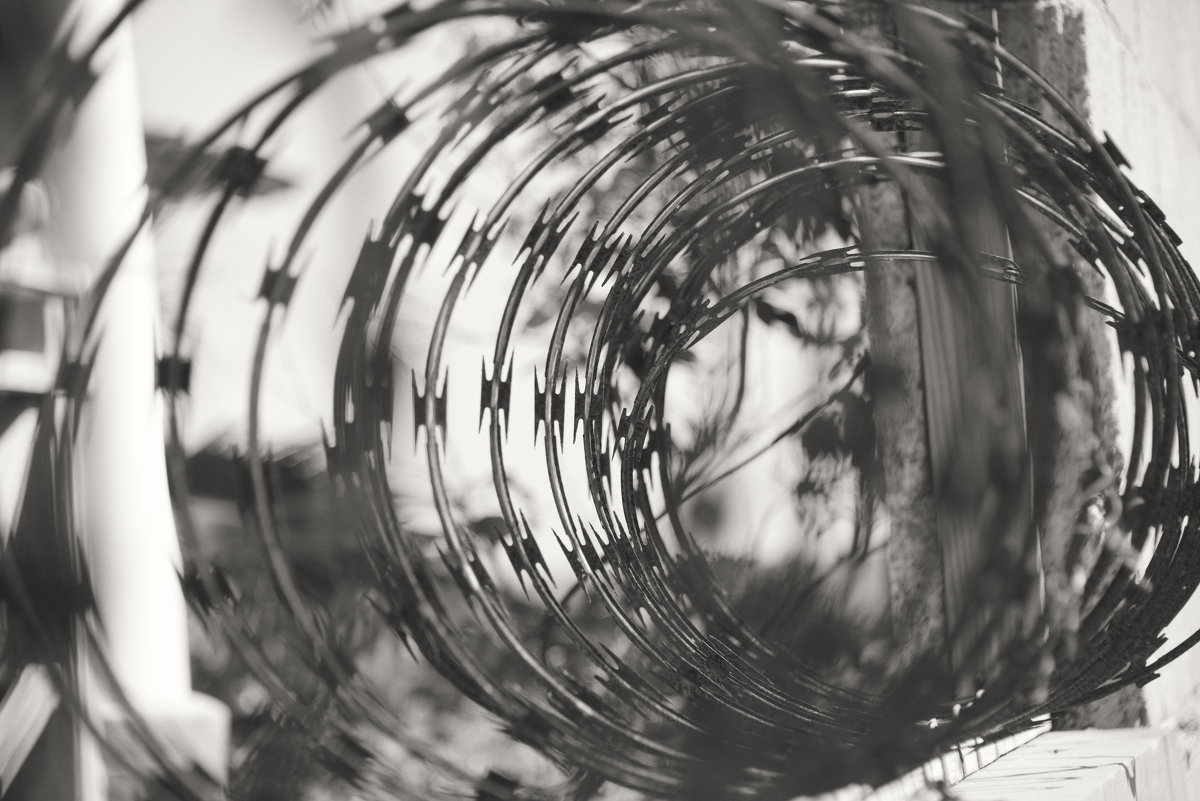 Спираль охраны - Алина Ванага