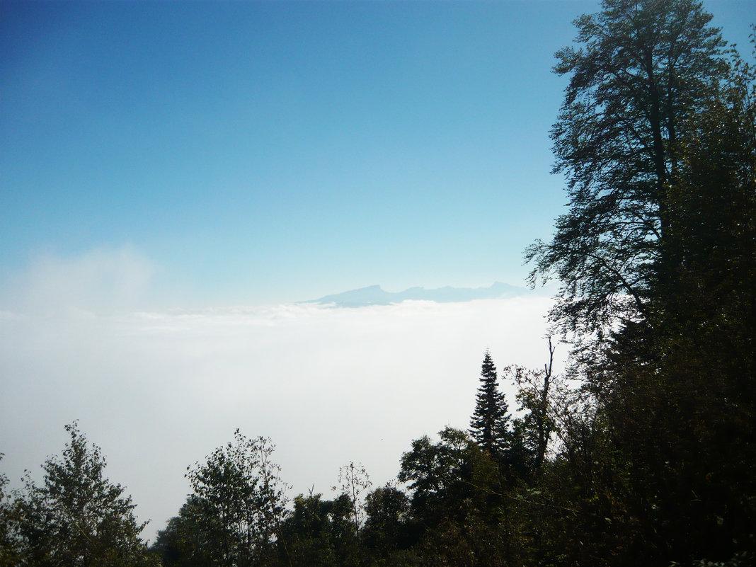 Над облаками - Надежда