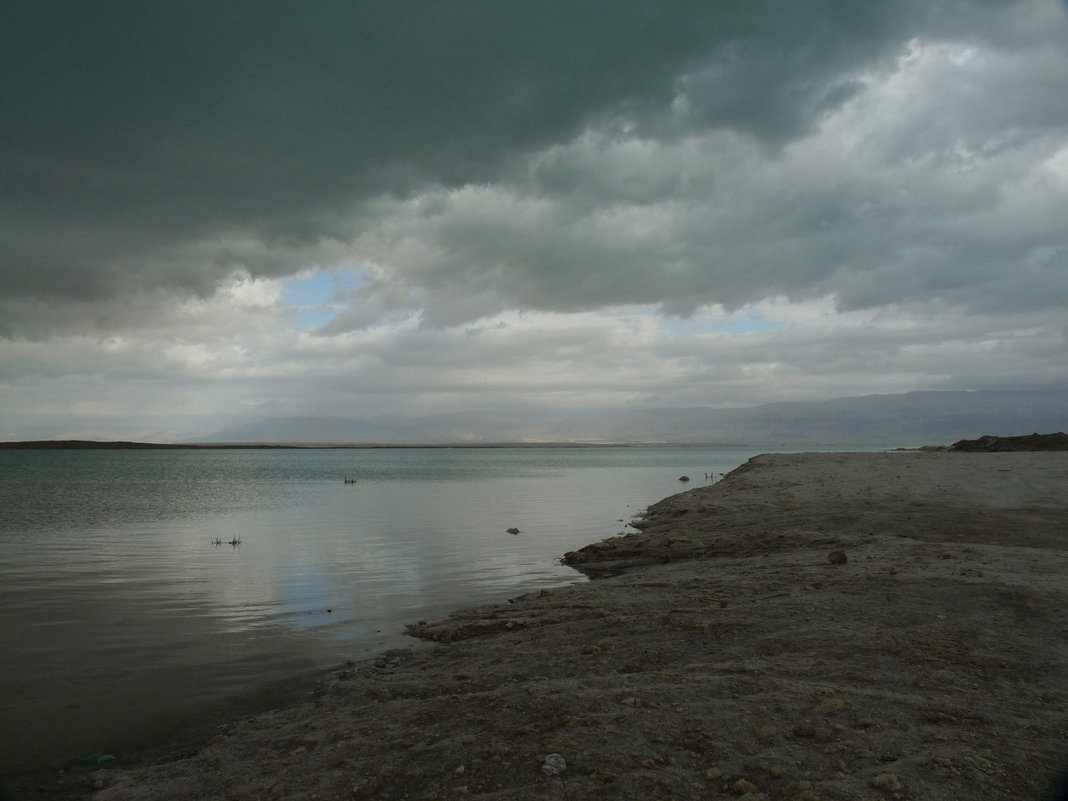 Зима на Мёртвом море - Лев Аронс