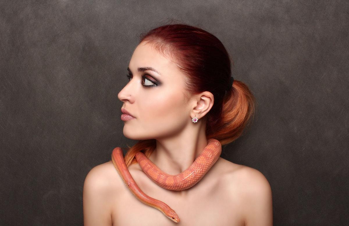 snake - Sandra Snow