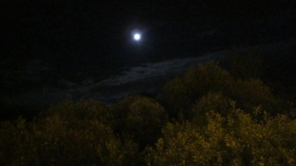 Луна - Галина