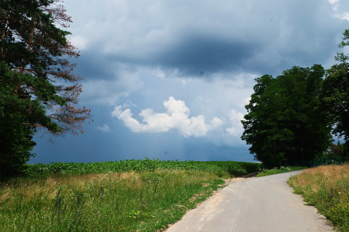 облака - юрий иванов