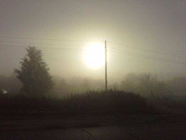Туман - Роман Геннадьевич