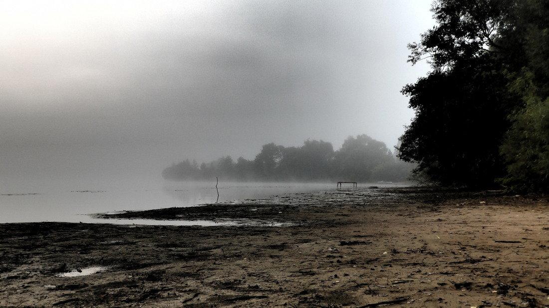 утро туманное..... - alexN alex